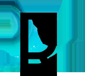 Logo Riapa